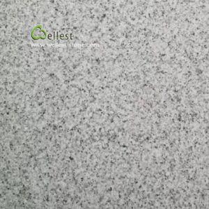 薄い灰色の花こう岩G603の白い真珠は花こう岩の敷石のタイルを炎にあてた
