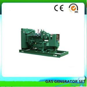 Heißes Verkaufs-auswärts elektrisches Lebendmasse-Gas-Generator-Set (50KW)