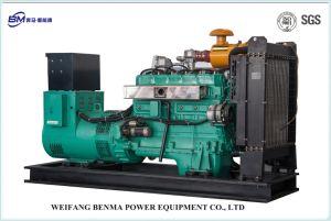 Générateur de gaz naturel des producteurs professionnels de la Chine avec SGS/certificat CE