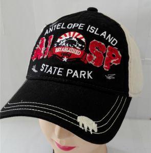 3D刺繍の習慣はゴルフ帽を遊ばす