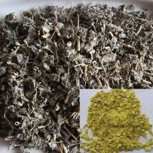 Best vende Produto pulverulento Dihydromyricetin, Extrato de Chá de videira