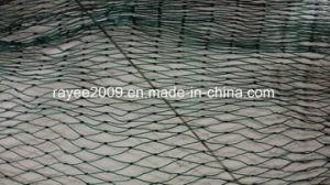 خضراء [نوتلسّ] [فيش تكل] [هدب] سمكة يزرع شبكة قفص