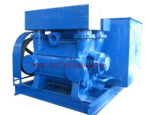 Wasser Ring Vacuum Pump (2BE3420)