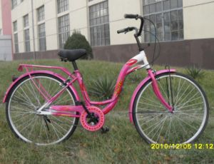 단 하나 속도 S 프레임 도시 자전거 (CB-018)