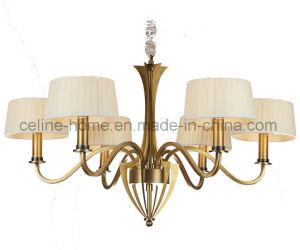 Iluminação de ferro para decoração (SL2110-6)