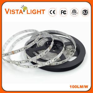 Striscia posteriore dell'indicatore luminoso 12V RGB 5050 SMD LED