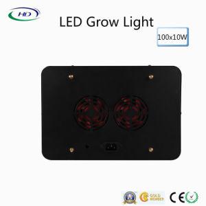 100PCS*10W zwarte leiden van de Huisvesting groeien Licht voor Commerciële Installaties