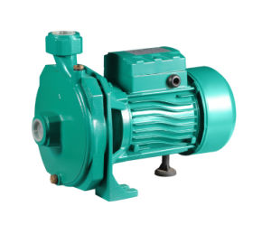 Pump centrifugo Cm100 1HP Highquality con Competitive Price Pump