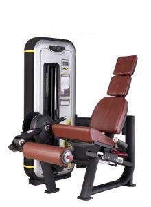 Mn-014 Extensión de pierna Trainer 2016 Nueva línea