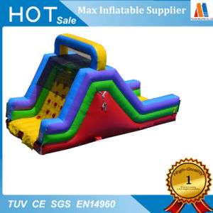 Toboganes inflables con piscina de fiesta