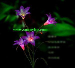 Garten-Licht der Solar Energy Farben-änderndes Funktions-LED