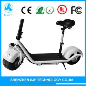Elektrischer Roller, elektrisches Fahrrad mit Li-Batterie