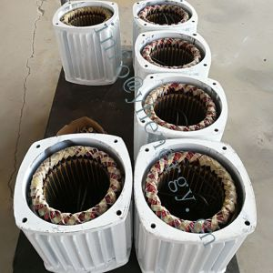 alternatore a magnete permanente 220V di CA 5kw per il generatore di vento 5kw