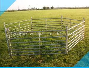 Galvanisiert 7 Schienen-Schaf-Hürden/Werfenhürden