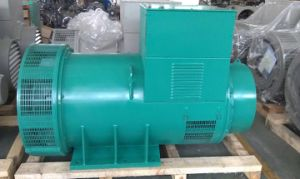 Alternator van de Dynamo van Faraday AC van Newage Brushless voor Generator