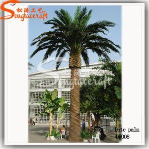 Bonita Árvore Artificial Árvore de plantas da Palm para decoração no comércio por grosso