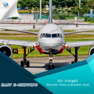 全体的のへの中国からののための安い航空貨物