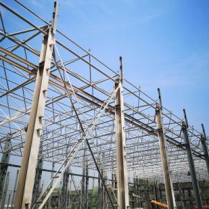 Luz de pré-fabricados e estrutura de aço galvanizado Frango Design de aves de capoeira