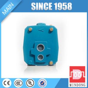 Pompe centrifuge à moteur électrique