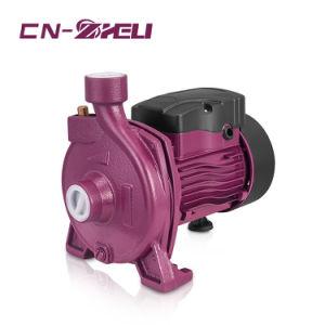 A CPM146 Fase Única Bomba de Água Limpa 0,75Bombas de água centrífuga da HP