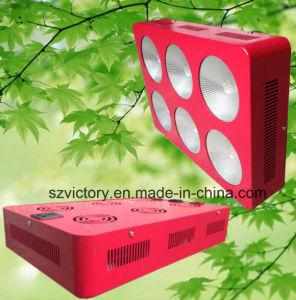430W 3W High Power LED Azul Rojo& Luz creciente