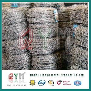 I prodotti della Cina comerciano il filo all'ingrosso a fisarmonica del rasoio del diametro della bobina di 450mm