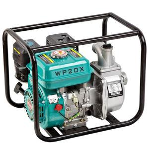 Piccola pompa ad acqua verticale elettrica portatile poco costosa del serbatoio della pompa Wp20