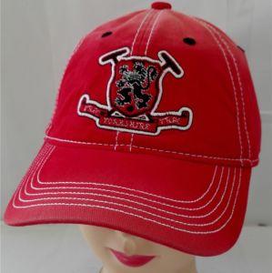 (LW15018)習慣はゴルフ安いOEMの野球帽を遊ばす