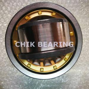 Cuscinetto a rullo cilindrico per il macchinario pesante Nj1006 di estrazione mineraria