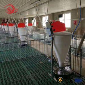 Sistema de alimentación de cerdos Comedero Lateral/ Doble Alimentador Húmedo Seco/// la canaleta de cerdo cerdo Silo alimentador para la alimentación