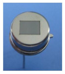 Os elementos de duplo PIR com sensor de detecção humano 500b Sensor infravermelho passivo Digital