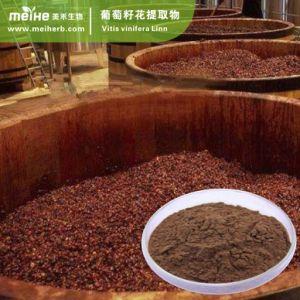 Estratto naturale del seme dell'uva di 100%