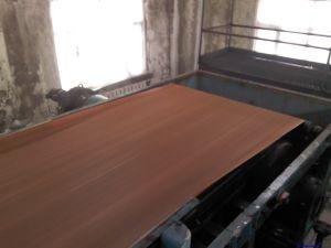 De Riem van de Filter van Fgd Desulfurizing van de elektrische centrale