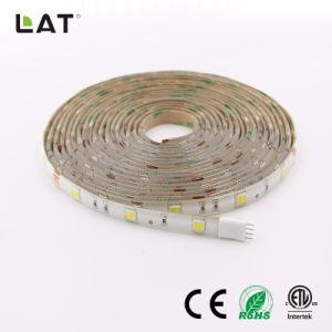 二重CCT SMD5025 5m WwおよびCw 30/60/120LEDs適用範囲が広いLEDの滑走路端燈