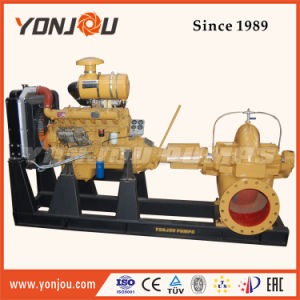 Pompa ad acqua centrifuga di doppia aspirazione di marca di Yonjou con il motore diesel