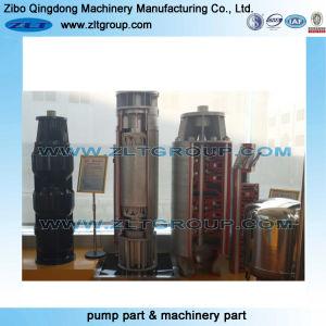 Kundenspezifische rostfreier/Kohlenstoffstahl-zentrifugales Wasser-versenkbare Pumpen-Anteile an CD4/316ss