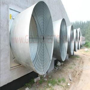 Kegel Fan voor Bird Farming Solution met Ce Certification (jcjx-50)