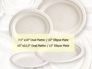 La bagasse plaque ovale (ENV3011, ENV3012)