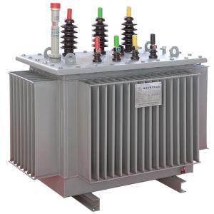 De pas ontwikkelde het Stabiliseren van het Voltage Transformator van de Macht/Voltage die Transfomer regelen