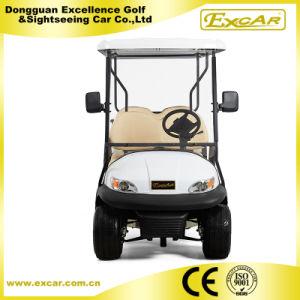 6 plazas de carros de golf eléctrico con motor DC 48V