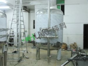 Het Systeem van de Filter van de Behandeling van het Water van het roestvrij staal
