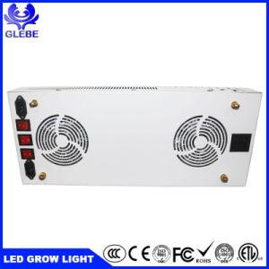 Nuevo Thor 1000W de luz LED tipo crecer con 2pcs cree Cxb 3590 20pcs alta potencia de 10 LED y 1pcs lámpara UV