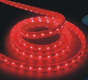 Striscia del circuito di colore rosso di qualità SMD 2835 di Hight LED