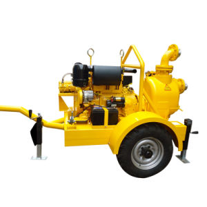 Pomp van de Dieselmotor van de Instructie van de Belemmering niet de Zelf Horizontale