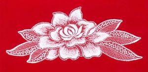 種類のカラー花
