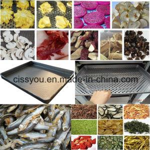 Fruits et légumes industriels Chair de poisson bouteille d'équipement de séchage
