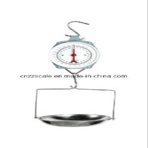 25kg equilibrio di pesatura meccanico (ZZG-200)