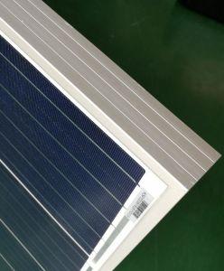 Hoher silikon PV-Sonnenkollektor der Leistungsfähigkeits-300W Poly