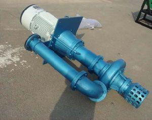 Le lisier de la pompe submersible