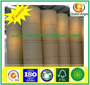 Berufshersteller des thermischen Paper/BPA thermischen Papiers